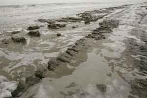 Example_of_beach_errosion_beach_mud